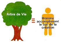Les principes divins niveau 4 - Signification arbre de vie ...